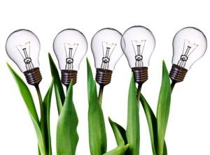 bombillas que crecen de las plantas