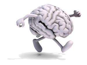 mas cerebro o mas culo